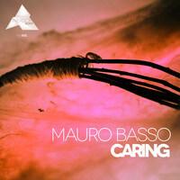 macro basso-the shining